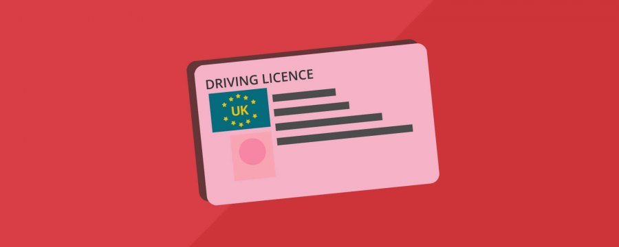 driving licence vector